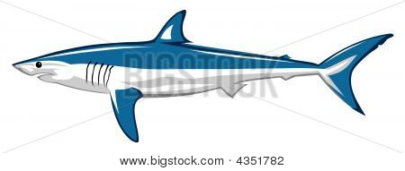 Abstract colored vector illustration of ocean shark poster