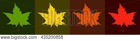 Autumnal Season Trendy Color Palette. Yellow, Orange, Red, Brown And Green Maple Leaves Background.