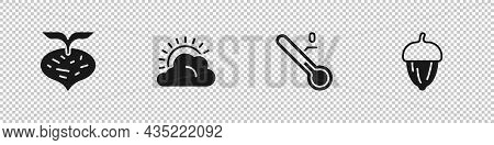 Set Beet, Sun And Cloud Weather, Meteorology Thermometer And Acorn Icon. Vector