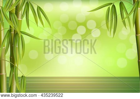 Green Bamboo Grove. Bamboo Spa Background, Wallpaper. Asian Oriental Beauty Spa Massage Ad Template,