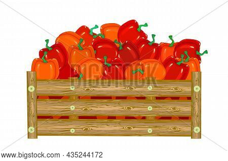 Wooden Box With Bell Peppers Isolated On White Background. Harvesting Vegetable. Fresh Eco Red Papri