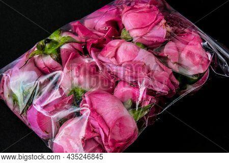 Environmental Pollution Concept. Flower In A Plastic Bag. Danger Problem. Environmental Conservation