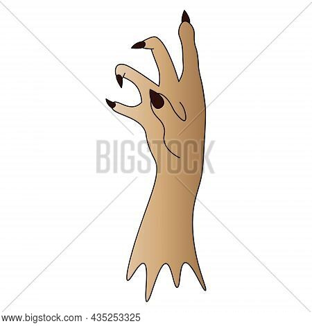 The Stump Of A Dead Man's Hand. Side View. Curved Fingers With Sharp Claws. Colored Vector Illustrat