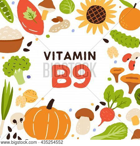 Natural Food Card With B9 Vitamin Rich Nutrition. Organic Healthy Nutrients Enriched With Folate. Co