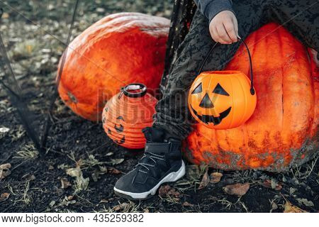 Halloween Kids. A Basket Of Jack O Lantern Chocolates In The Background Of Huge Ugly Pumpkins In The