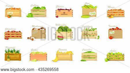 Cartoon Collection Of Fresh And Healthy Vegetables And Fruits In Container For Export Or Sale. Vecto
