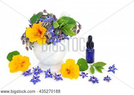 Borage, mint and nasturtiums in a mortar with essential oil bottle, immune boosting and anti inflammatory herbs used in herbal medicine remedies to treat colds, flu, bronchitis and coughs.