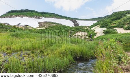 The Stream Flows Through A Green Meadow. On The Banks Of Lush Grass, Wildflowers. There Are Areas Of