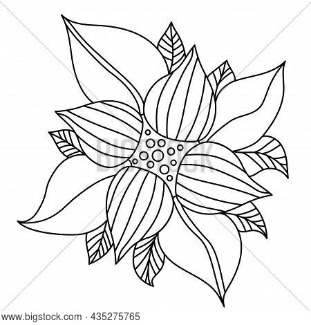 Decorative Flower. Vector Linear Illustration. Floral Decorative Composition For Design And Decor, C