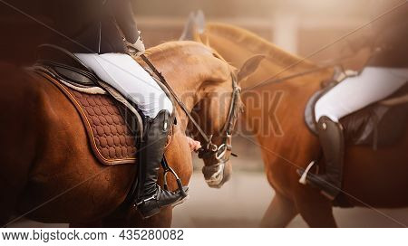 Riders Are Sitting On Two Sorrel Horses In Saddles, Illuminated By Sunlight. Equestrian Sports And E