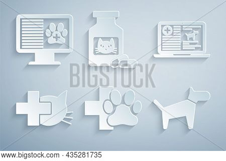 Set Veterinary Clinic, Clinical Record Dog On Laptop, , Dog, Cat Medicine Bottle And Pills And Pet M