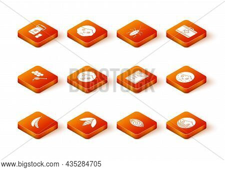 Set Kidney Beans, Bee, Honeycomb With Honey Dipper, Runny Nose, Reddish Eye Allergic Conjunctivitis,