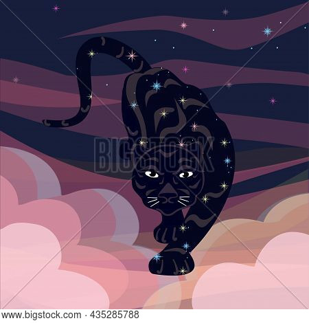 Tiger Zodiac. Chinese New Year 2022 Year Of The Tiger. Background Starry Sky And Clouds.