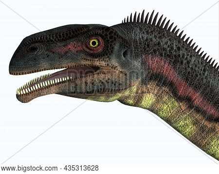 Plateosaurus Dinosaur Head 3d Illustration - Plateosaurus Was A Herbivorous Prosauropod Dinosaur Tha