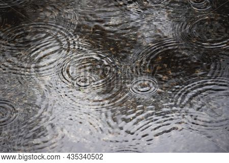 Rainy Weather At Fall Season. Circle Of Raindrops On Puddle Surface. Wet Pavement.
