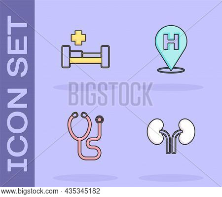 Set Human Kidneys, Hospital Bed, Stethoscope And Location Hospital Icon. Vector