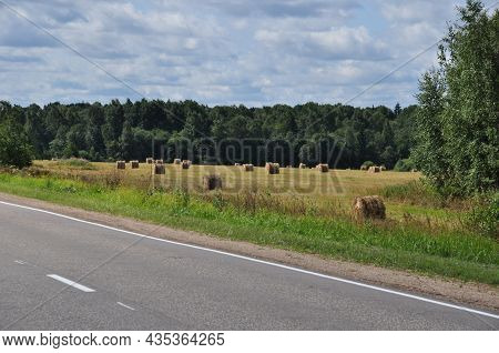 Panorama Across The Field. A Field With Stripes Of Cut Grass. View From The Road To A Field With Mow
