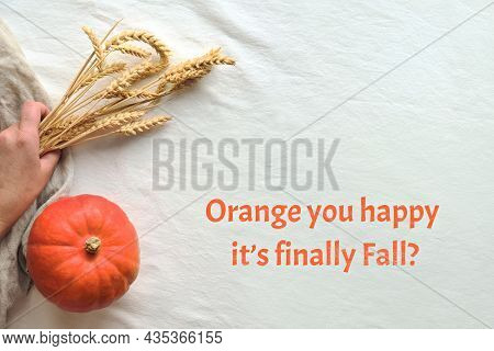 Text Orange You Happy Its Finally Fall On Off White Textile. Flat Lay With Orange Pumpkin And Dry Wh