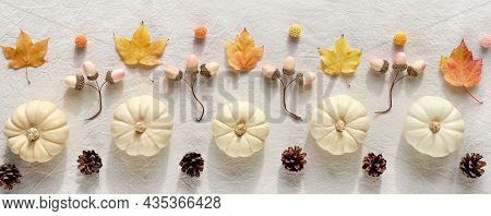 Panoramic Decorative Autumn Border From Natural Decor - White Pumpkins, Beige Acorns, Dry Fall Leave