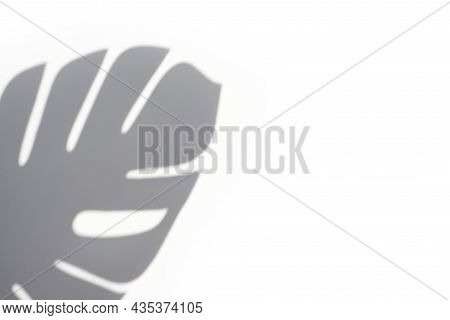 Trending Concept In Natural Materials With Palm Leaf Shadows On White Background. Presentation With