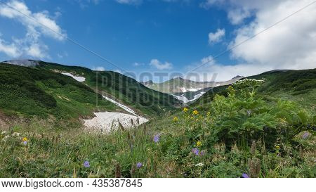 Lush Grass And Colorful Wildflowers Grow On The Hills. Patches Of Melted Snow Are Visible On The Mou