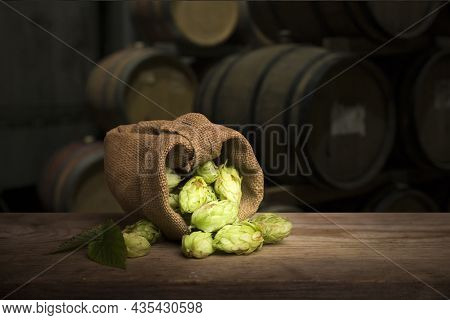Hop Twig Over Old Wooden Table Background. Vintage Style. Beer Production Ingredient. Brewery. Fresh