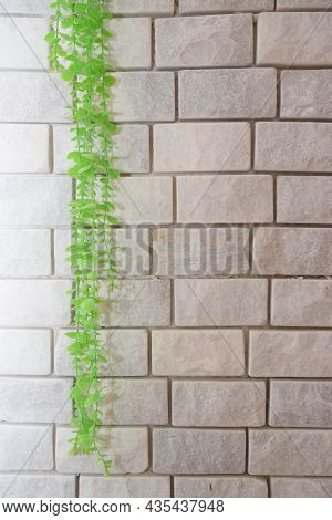 White Brick Wall With Artificial Green Branch And Leaves, Spring Background, Invitation, Postcard. H