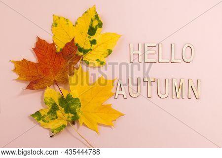 Hello Autumn -text And Autumn Leaves On A Pastel Background. Autumn Backgroun