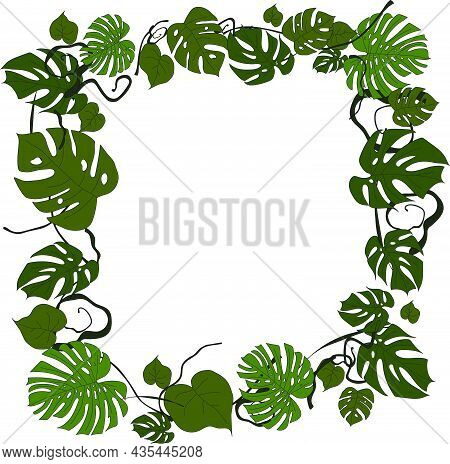 Monstera Leaves Frame For Your Design, Copyspace, Vector Template