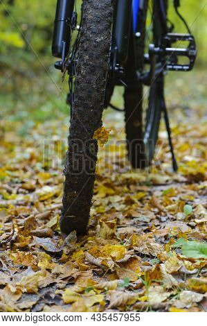 Front Wheel Of A Mountain Bike. Mountain Bike. Stands In The Forest, In Dry Autumn Leaves. Concept O