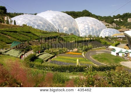 View Of Bio Domes At Eden Project