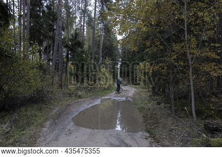 A Man On A Bicycle In The Autumn Forest. Landscape With A Cyclist. Road With Puddles In The Forest.