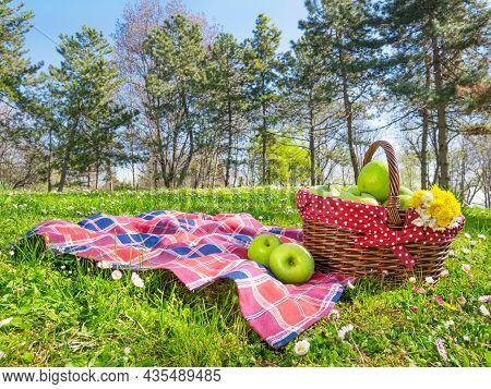 Picnic Basket And Blanket In Park At Spring
