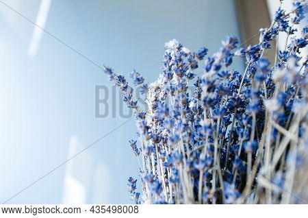 Beautiful Bouquet Of Lavender Lavandula Flower Beautiful Scent Of Freshly Picked Flower From The Bio