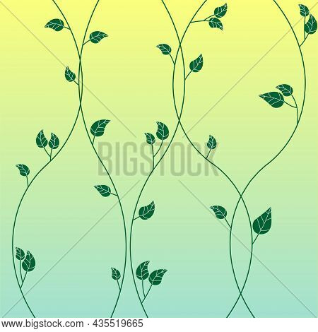 Creeping Ivy In The Evening Light Vector