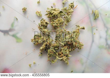 Shredded Marijuana, Top View, Flat Lay. Cannabis Stuff On White Background. Legal Hemp As A Concept