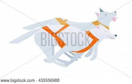 Vector Illustration With Two Sled Dogs In Harness, Winter Sport