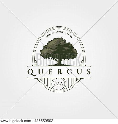 Vintage Oak Tree Logo Vector Badge Illustration Design, Vintage Tree Line Label Design