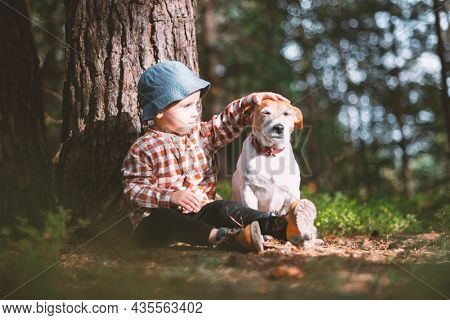 Small kid in blue cap with white dog puppy breed jack russel terrier in autumn forest. Childhood with pets concept