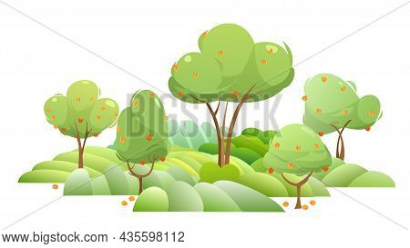 Garden And Rolling Hills. Rural Landscape With Fruit Trees And Farmer Hills. Ripe Apricot. Cute Funn