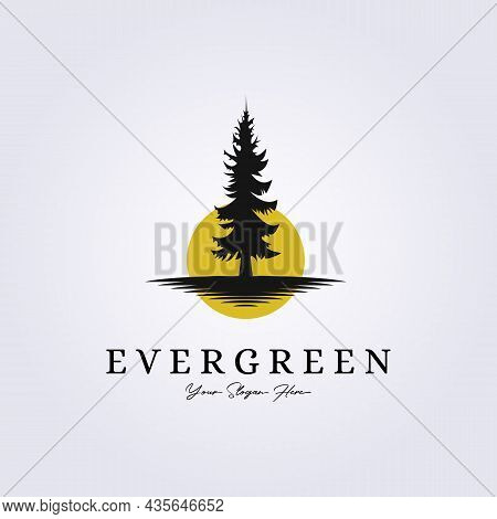 Pine, Evergreen, Rustic Woodland Logo Vintage Retro Fir, Hemlock, Spruce, Conifer, Cedar, Coniferous