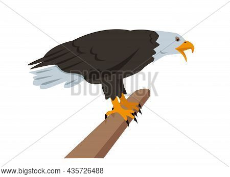 Bald Eagle Sitting On Branch. Bird Icon Isolated On White Background. North American Eagle For Natur