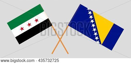 Crossed Flags Of Bosnia And Herzegovina And Interim Government Of Syria