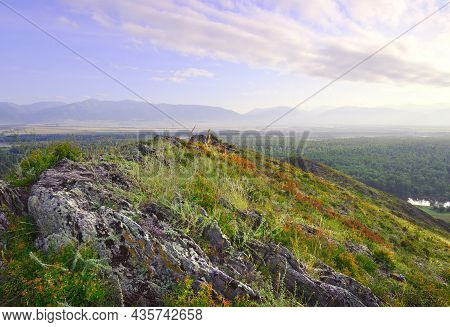 Stones Overgrown With Moss In The Altai Mountains Under The Blue Morning Sky. Siberia, Russia