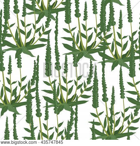 Foliage And Greenery Of Plants, Flora Pattern