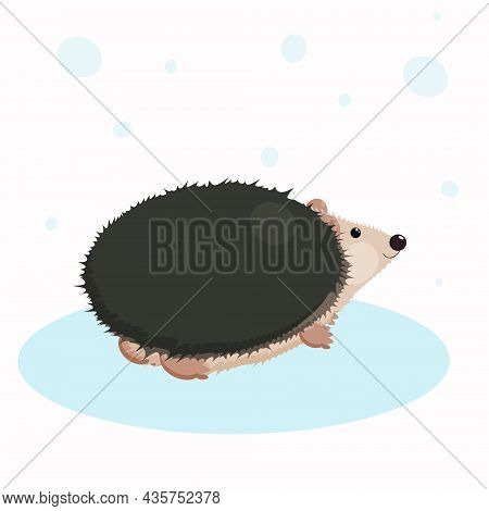 Illustration Of A Little Funny Hedgehog, Hilarious Cartoon Character.