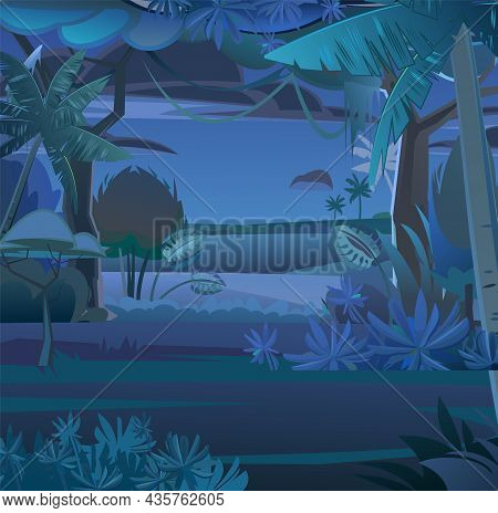 Jungle Creepers. Dense Thickets. View From Dark Night Forest. Southern Rural Scenery. Tropical Fores
