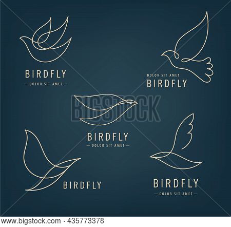 Vector Set Of Line Bird Logos, Pigeon Silhouettes, Flying Abstract Logos, Icons Isolated. Monoline M