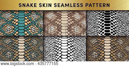 Trendy Snake Skin Vector Seamless Patterns Set. Hand Drawn Wild Animal Reptile Skin, Natural Snake R