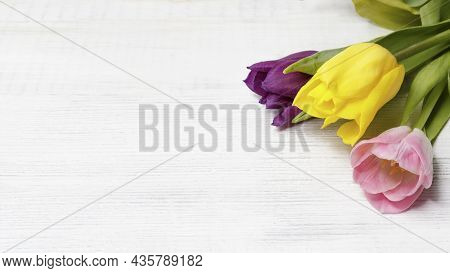 Spring Flowers Tulips On A White Wooden Background With Space For Text. Copy Space. Can Be Used As A